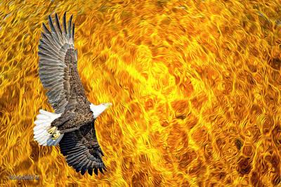 Fire Storm American Bald Eagle Poster by LeeAnn McLaneGoetz McLaneGoetzStudioLLCcom
