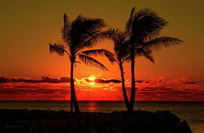 Fire Sunset Through Palms Poster