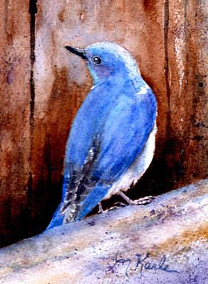Firehole Bridge Bluebird - Male Poster