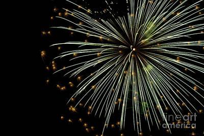 Fireworks 2016 Poster by Tara Lynn