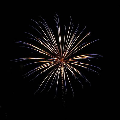 Fireworks From A Boat - 1 Poster by Jeffrey Peterson