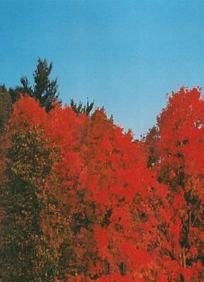 Firey Fall Poster