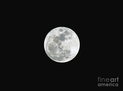 Poster featuring the photograph First Full Moon Of 2016 by Eddie Yerkish