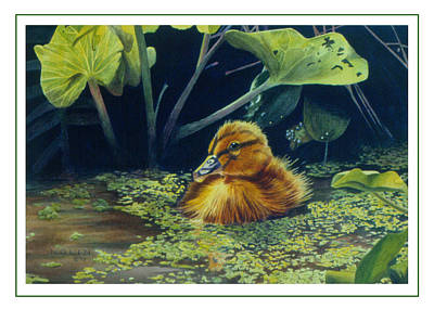 Poster featuring the painting First Spring - Mallard Duckling by Bob Nolin