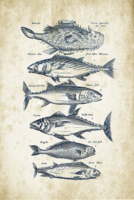 Fish Species Historiae Naturalis 08 - 1657 - 03 Poster