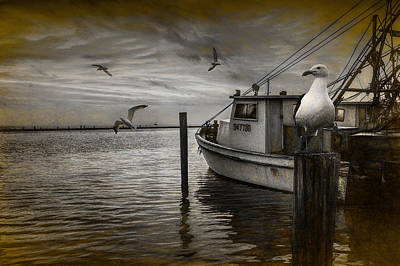 Fishing Boat And Gulls With Painterly Effects Poster