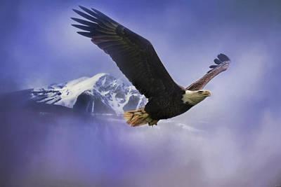 Fishing In Winter Bald Eagle Art Poster by Jai Johnson