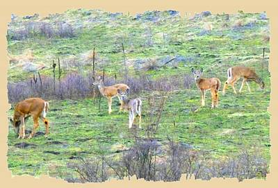 Five Deer Grazing Poster