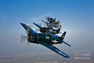 Five Grumman F8f Bearcats In Formation Poster
