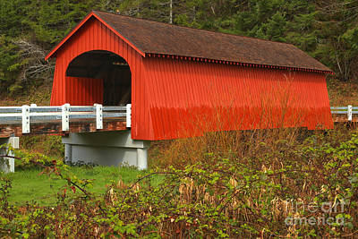 Five Rivers Covered Bridge Poster by Adam Jewell
