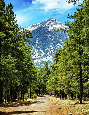 Flagstaff Arizona Road To Mountains Poster by Susan Schmitz