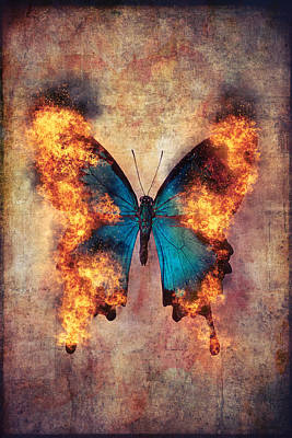 Flaming Blue Butterfly Poster by Garry Gay