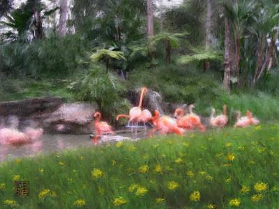 Flamingo Garden Poster