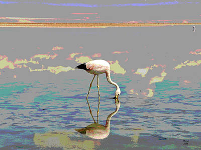 Flamingo In The Sunset Poster by Charles Shoup