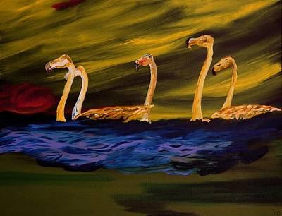Flamingoes Swim African Birds Poster