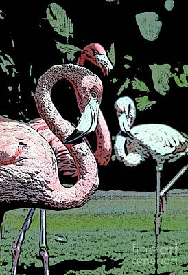 Poster featuring the photograph Flamingos II by Jim and Emily Bush