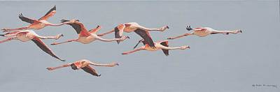 Flamingos In Flight Poster