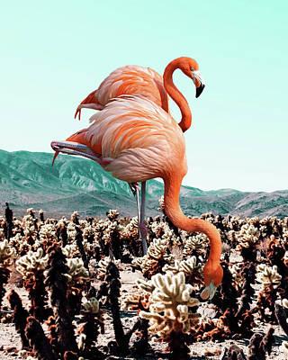 Flamingos In The Desert Poster