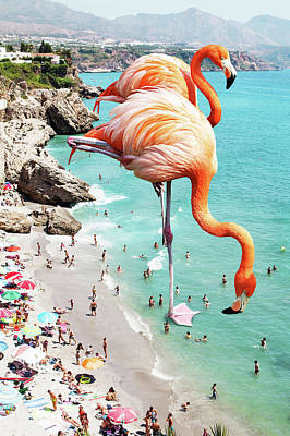 Flamingos On The Beach Poster by Uma Gokhale