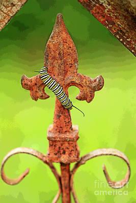Fleur De Lis Artistic And Monarch Caterpillar Poster by Luana K Perez
