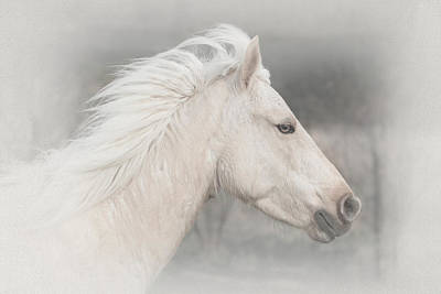 Flight Of The Spirit Horse Poster by Brent Davis