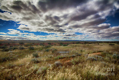 Poster featuring the photograph Flinders Ranges Fields  by Douglas Barnard