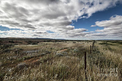 Poster featuring the photograph Flinders Ranges Fields V2 by Douglas Barnard