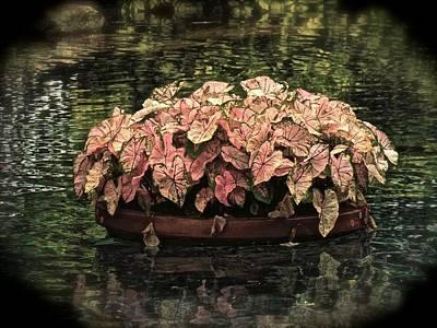 Floating Flower Pot Poster