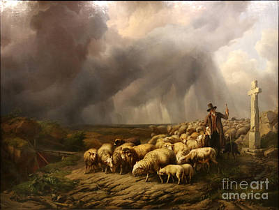 Flock Of Sheep Surprised By The Storm Poster