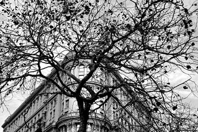 Flood Building - San Francisco - Corner Tree View Black And White Poster