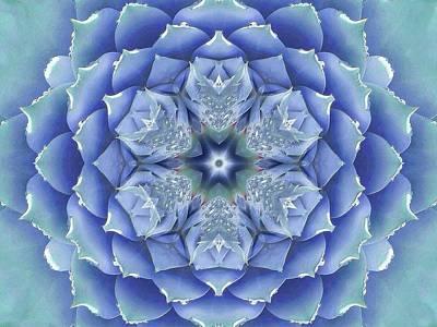 Flora Muse Mandala Poster