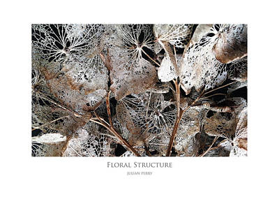 Floral Structure Poster