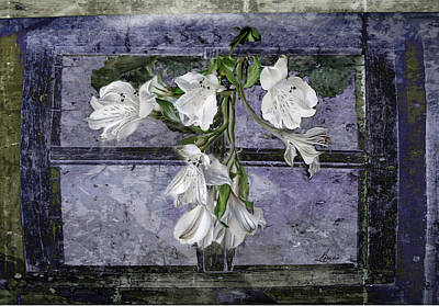 Poster featuring the photograph Floral Window Frame by Bonnie Willis