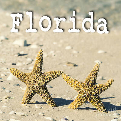 Florida Poster by Edward Fielding