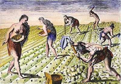 Florida Natives, 1591 Poster by Granger