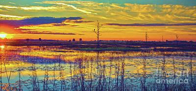 Florida Nature Paradise 2  Poster
