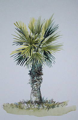 Florida Palm Botanical Poster