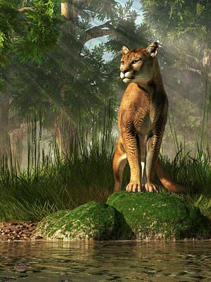 Florida Panther Poster by Daniel Eskridge
