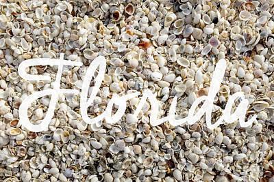 Florida Seashells Poster by Edward Fielding