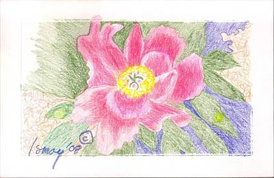 Poster featuring the drawing Flower 3 - Pink Single Peone by Rod Ismay