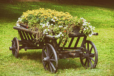 Flower Country Wagon On Green Grass Poster