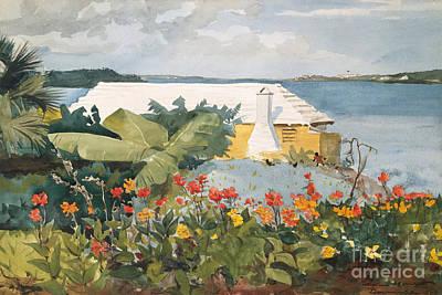 Flower Garden And Bungalow, Bermuda, 1899  Poster