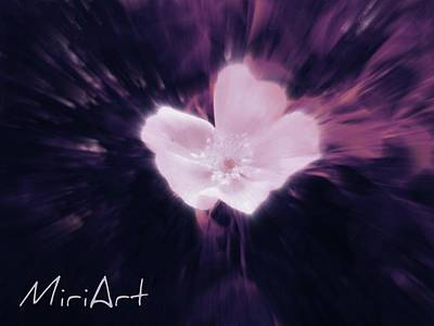 Poster featuring the photograph Flower In Purple by Miriam Shaw
