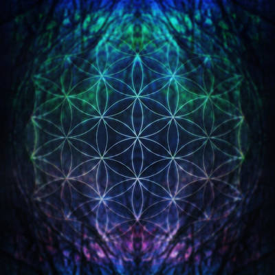 Flower Of Life Neon Poster by Edouard Coleman