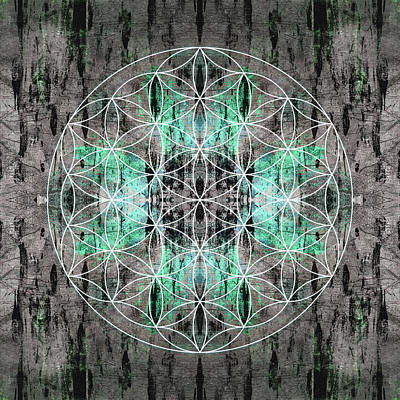 Flower  Of Life Teal Grey Poster
