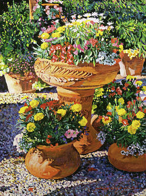 Flower Pots In Sunlight Poster by David Lloyd Glover