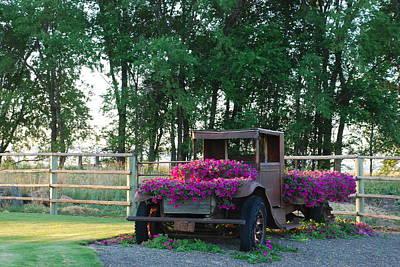 Flower Truck Poster by Linda Larson