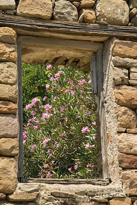 Flowering Window View Poster