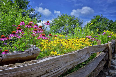 Flowers Along A Wooden Fence Poster by Steve Hurt