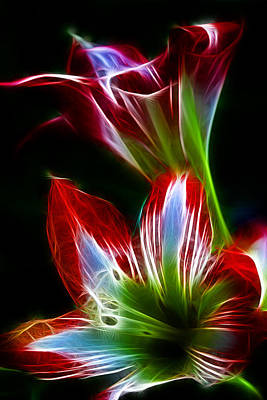 Flowers In Green And Red Poster